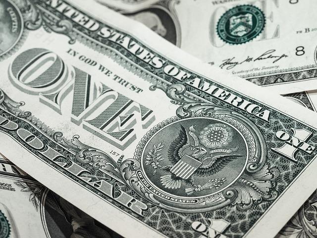 nákup v dolarech