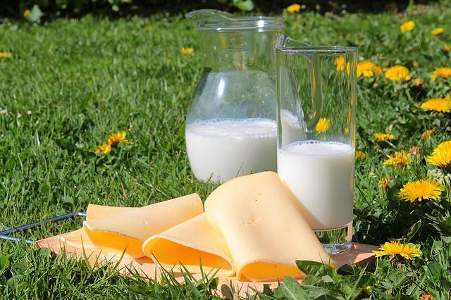 sýr a mléko.jpg