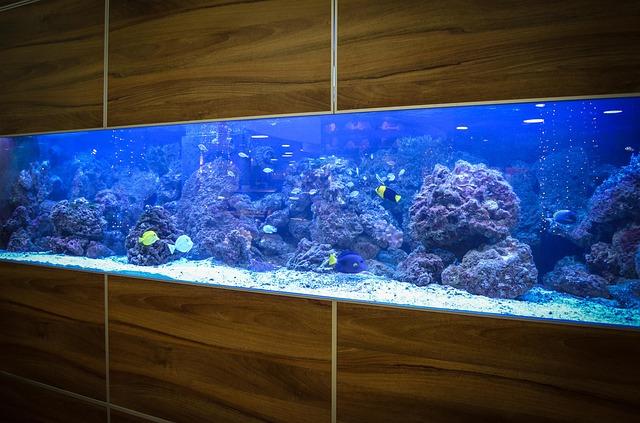 vestavné akvárium