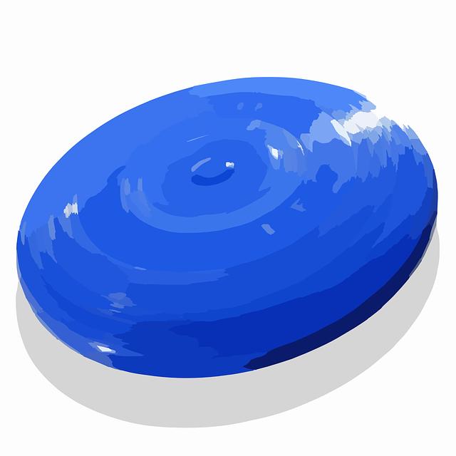 disk na hraní discgolfu